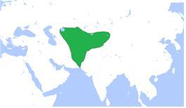 500년경 에프탈 제국의 강역.
