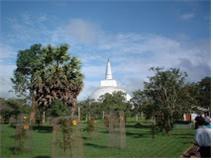 스리랑카 아누라다 뿌라 마하 비하라(대사)에서 열린 제4차 경전결집(상좌부 전통)