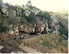 인도 왕사성 사타파니(칠엽굴) 동굴